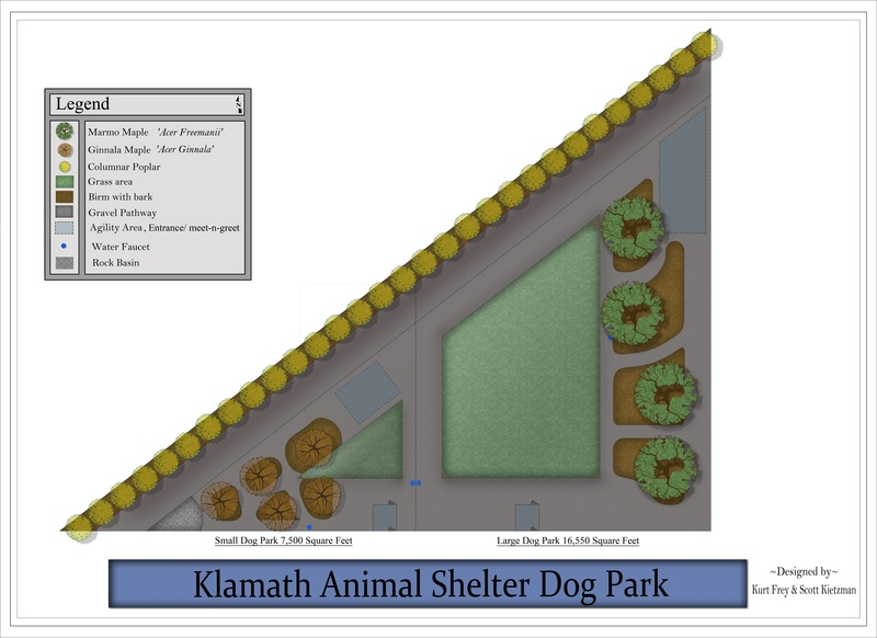 Dog Park 2012